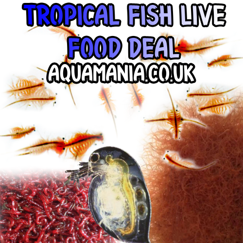 Tropical Fish Live Foods Deal